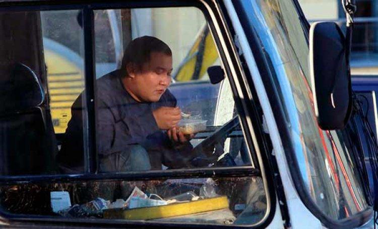 В Вологодской области мигрантам запретили садиться за руль